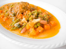Meat roulade with vegetable soup on white dish. Royalty Free Stock Photos
