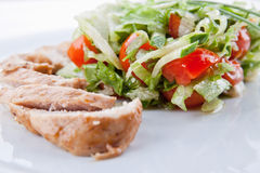 Meat with salad Stock Photography