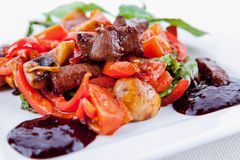 Meat with salad Royalty Free Stock Photo