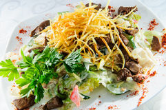 Meat salad topped with french fries. Royalty Free Stock Photo