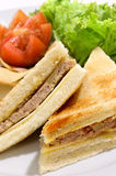 Meat Sandwich. Sandwich, made from bread fill with meat, served with tomato and salad Royalty Free Stock Photos