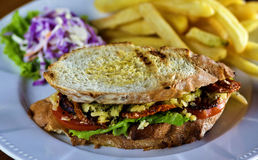 Meat sandwich Royalty Free Stock Photo