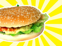 Meat sandwich on roll Royalty Free Stock Images