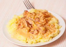 Meat with sauce and mashed potatoes Royalty Free Stock Photography