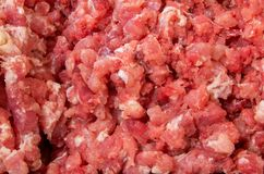 Meat for sausage. Minced meat for sausages waiting to spice Stock Images