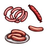 Grilled meat sausage and frankfurter sketch. Meat sausage on plate sketch. Fresh beef and pork sausage, grilled frankfurter and weenie isolated icon of meat Stock Photography