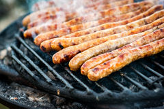 Meat sausages roasted on the grill Stock Photography