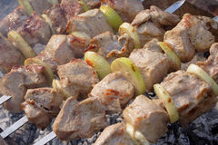 Meat shashlyk a barbecue clouse-up Stock Image