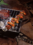 Meat skewer. A meat skewer over a portable grill at a campament Stock Images