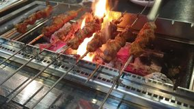 Meat skewer on the grill stock footage