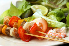 Meat skewer with vegetables Stock Images
