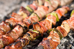 Meat skewers Stock Photos