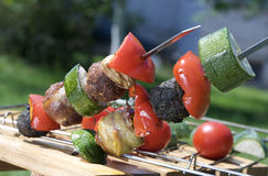meat on skewers Stock Photo
