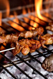Meat skewers in a barbecue Royalty Free Stock Photos