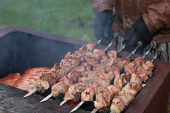 Meat skewers on the barbecue coals Stock Photography