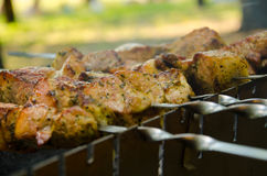 Meat on skewers Stock Image