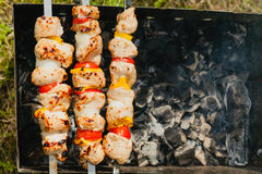 Meat skewers being grilled Royalty Free Stock Images