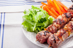 Meat Skewers with Carrots and Salad Stock Photos