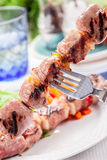 Meat Skewers with Carrots and Salad Stock Photography