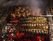 Meat skewers and fish on the barbecue coals Stock Photo