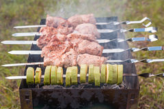 Meat on the skewers in the grill. Meat on the skewers in a grill outdoors Royalty Free Stock Photo