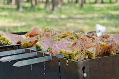 Meat on skewers Royalty Free Stock Image
