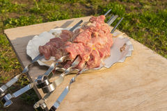 Meat on skewers for shashlik Stock Photography
