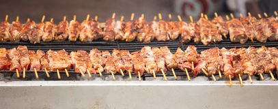 Meat skewers souvlaki on grill. Close up, banner, front view with details. stock photos