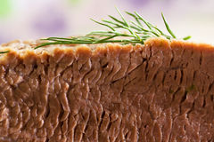 Meat. Slice meat with branch dill of close up Royalty Free Stock Images