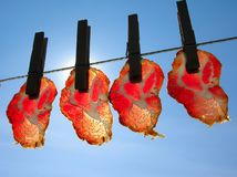 Meat slices. Smoke-dried Royalty Free Stock Image