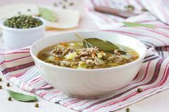 Meat soup with beef, mung green beans, legumes, hot Indian Stock Image