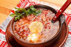 Meat soup with lemon Royalty Free Stock Photos