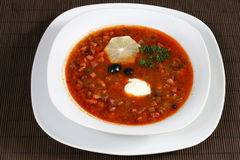 Meat soup with sour cream and lemon. The meat soup with sour cream and lemon Stock Photo
