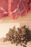 Meat and spice Royalty Free Stock Photos