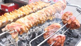 Meat on a spit stock footage