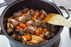 Meat stew Royalty Free Stock Photo
