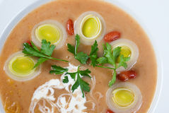 Meat thick soup with vegetable Royalty Free Stock Photo