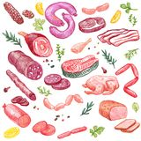 Meat vector elements. Vector set of meat drawing by color pencil, doodle meat, sausages, ham and spices, hand drawn vector elements Stock Images