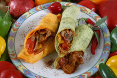 Meat and vegetable wrap. With elk meat stock photo