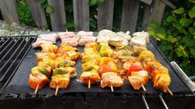 Meat and vegetables baked on an open fire stock video footage