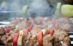 Meat and vegetables kebab Stock Images