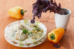 Meatball soup with vegetables Royalty Free Stock Image