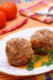 meatballs Royaltyfri Fotografi