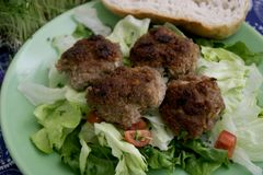 Meatballs of minced meat. Some meatballs of minced meat with a salad Royalty Free Stock Images