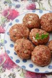 Meatballs of minced meat. Some raw meatballs of minced meat with onions Stock Images