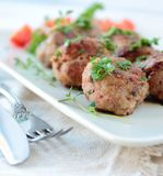 Meatballs with parsley Stock Photography