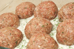 Meatballs ready to be cooked Stock Image