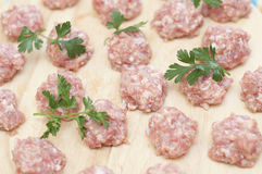 Meatballs ready to be cooked Royalty Free Stock Photos