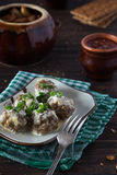 Meatballs with spring onions Royalty Free Stock Image