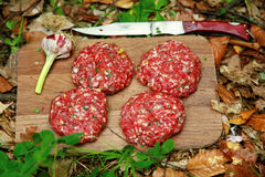Meatballs in the woods. Meatballs with garlic on a board in the woods royalty free stock images